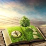 boek klein